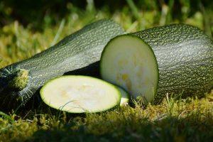 zucchini-1659094_960_720